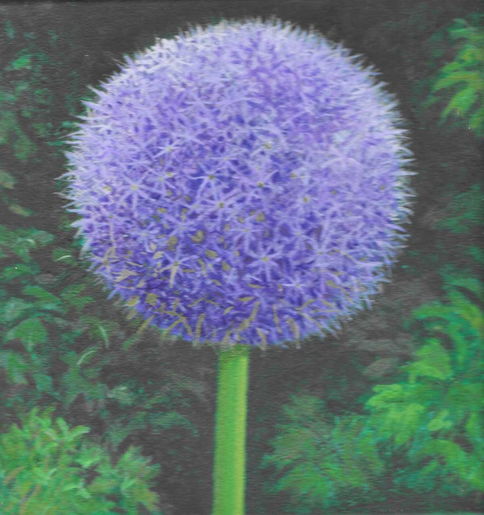 My Allium by Walter Bernadini