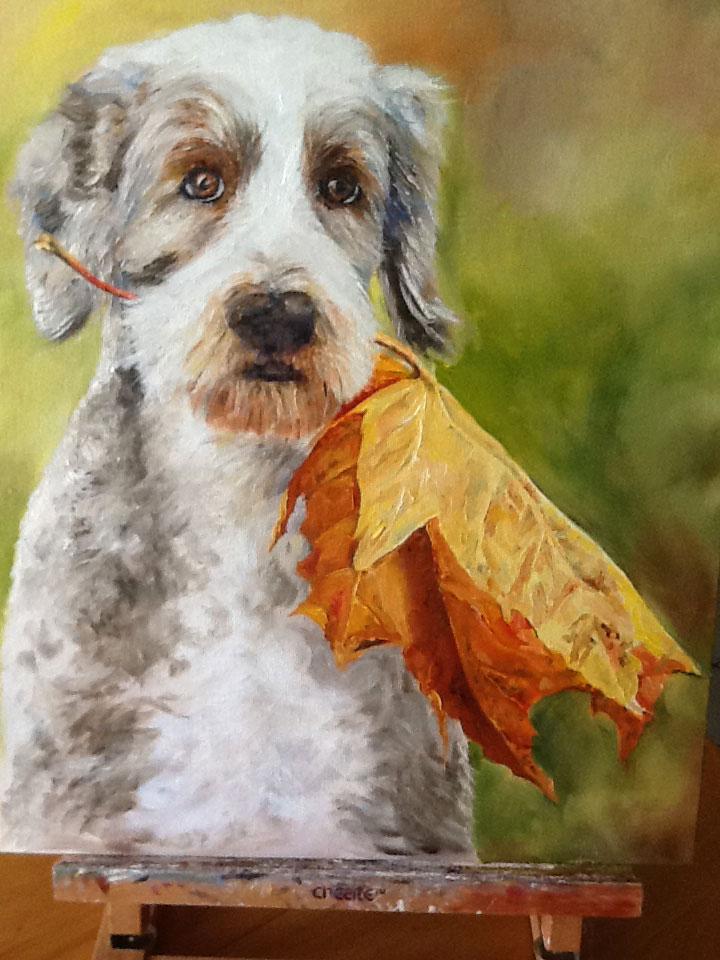 Dog Portrait with Maple leaf